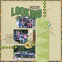 moose_looking.jpg