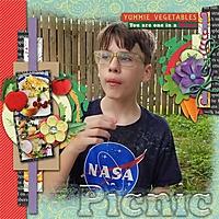 picnic5.jpg