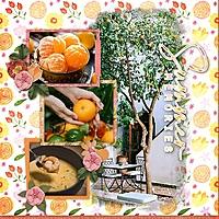 tangerine_dream_rz.jpg