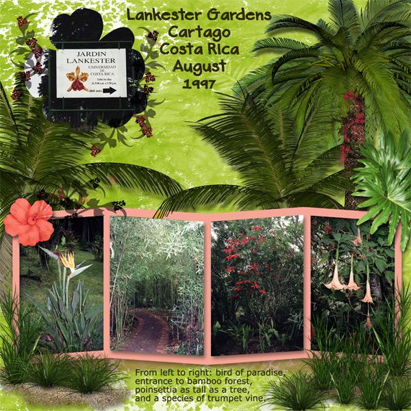 0897 Lankester Gardens 1