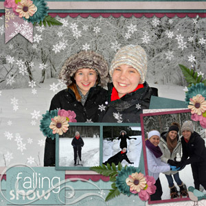 0118 Brush Finland Snow