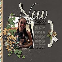 New-Puppy_webjmb.jpg