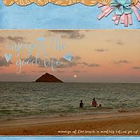 Summer-moonrise-webv.jpg