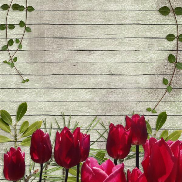 I Dream of Spring