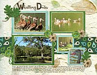Whistling-Ducks.jpg