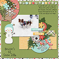DextersFirstSnow-bhs_holidaycuties.jpg