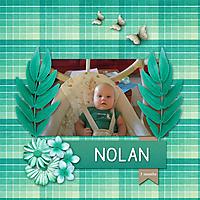 Nolan-_-3-mos.jpg