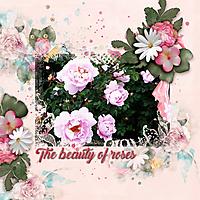 The-beauty-of-roses.jpg