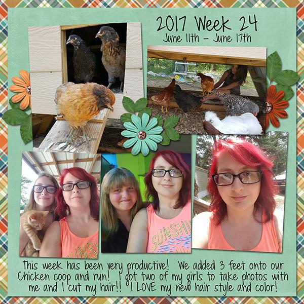 2017 Week 24