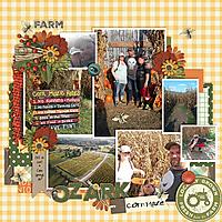 ozark_corn_maze.jpg