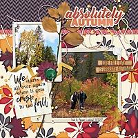autumnTrail--scrplift.jpg