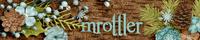 mrottlerDec17.jpg