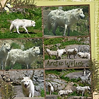 Arctic_Wolves.jpg