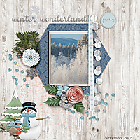 Winter-wonderland13.jpg