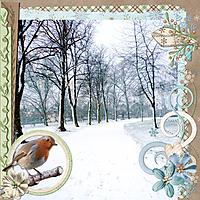 Winter_Robin.jpg