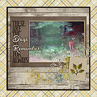 DAYS-TO-REMEMBER2.jpg