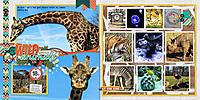 web_djp332_2017_Feb24_Zoo.jpg