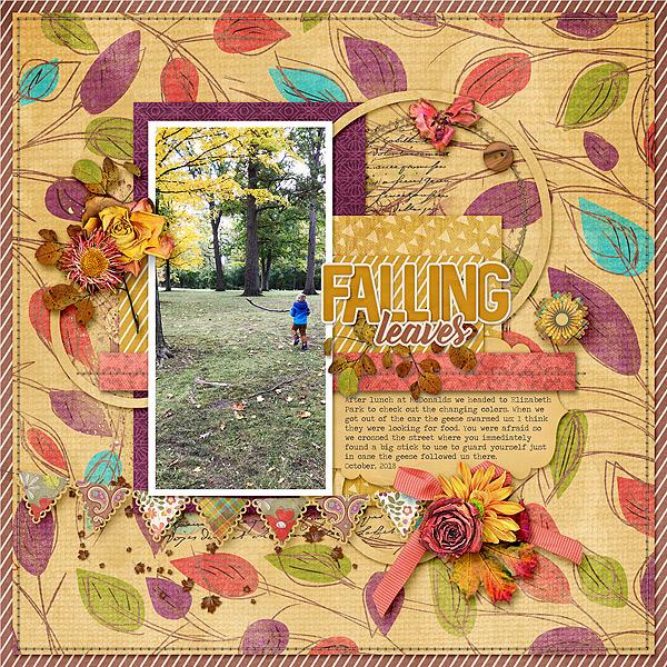 Fall at Elizabeth Park