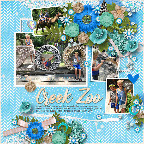 Creek Zoo 2019