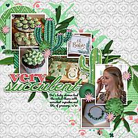 6-18-aimeeh_cactuslover.jpg