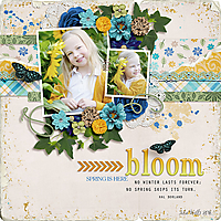 AHD-bloom-9March.jpg