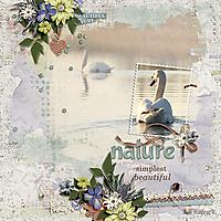 AHD-nature-10Aug.jpg