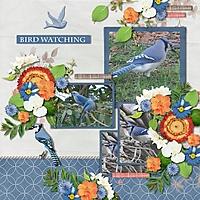 AH_Bird_Song_600_maureen_HSA_tmp_Copper_Spice.jpg