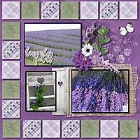 AH_Fields_of_Lavender_600_maureen.jpg
