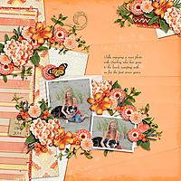 AimeeHarrison-OrangeSpice_HandTossed1Temp-Bella2014.jpg