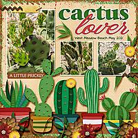 CactusWestmeadowtcot-cactusmakesperfect2_edited-6-WEB600.jpg