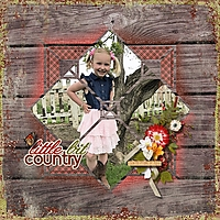 Little_Bit_Country_-_Rochelle_-_600.jpg