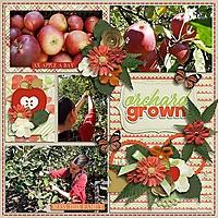 Orchardgrownth.jpg