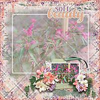 RachelleL_-_Faded_Beauty_by_AimeeH_-_Blooms_in_Bloom_4_tmp1_600.jpg