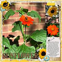 bea_dt-thebiggerthebetter4-ahd_sunflower-600.jpg