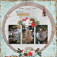 bring-happiness.jpg