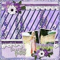 fileds-of-lavender-aimee-ah.jpg