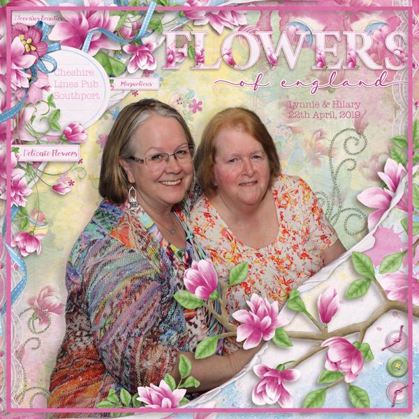 Magnolius - Flowers of England