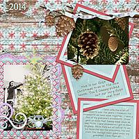 2014_dec_christmas-tree.jpg