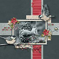 AKG_birds.jpg