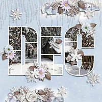 December_Day.jpg