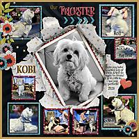 Kobi-Trickster-Pop-400web.jpg