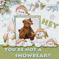 No_snowbear.jpg