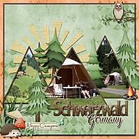 Temp_camping_TGO_Schwarzwald.jpg