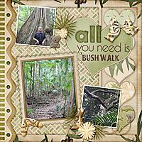 bush_walk1.jpg