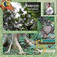 J-Muir-trees_webv.jpg