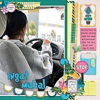 03_19_2020_Jassy_driving.jpg