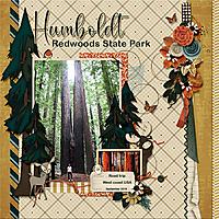 SNP_Humboldt_Redwoods_State_Park.jpg