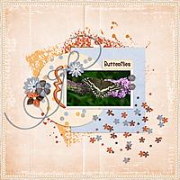Butterfly_small1.jpg