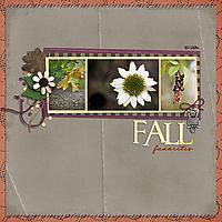 Fall_Favorites1.jpg