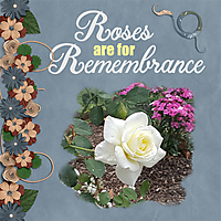 Roses_for_Remembrance_small.jpg